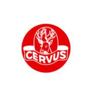 cervus-pennelli-pittura-1-edil-mea-prodotti-edilizia-bagno-clima-pavimenti-giardino-accessori-matera-basilicata